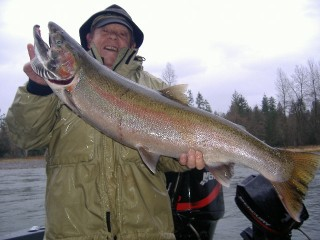 17 Pound Cowlitz River Buck Steelhead