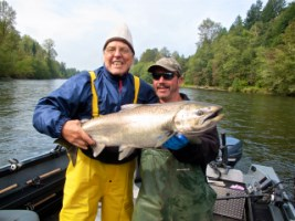 Cowlits river King Salmon Sept 2013